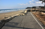 Japan earthquake_20110331 (55).jpg