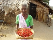 chiliandsrilanka_2011078(1).jpg