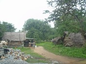 srilankanorth2320121008(2).jpg
